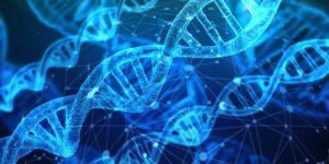 Sydney DNA Testing Clinic